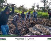 A prefeitura em parceria com o SENAR realizaram o curso de Oleicultura Básica.